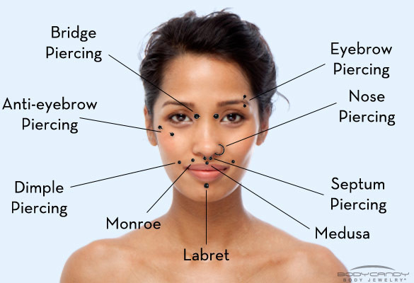 lesbians-fondled-facial-piercing-chart-furry